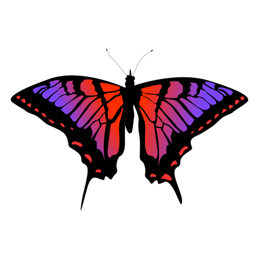 Butterfly insect vector Transparent PNG