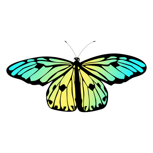 Colored garden butterfly design Transparent PNG