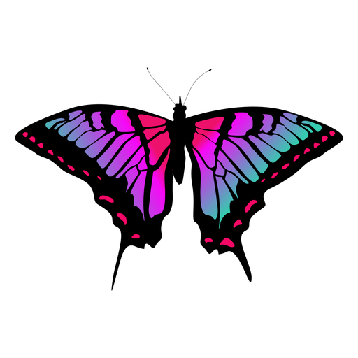 Colorful butterfly vector Transparent PNG