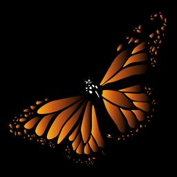 Ausführlicher schwarzer orange Schmetterlingsvektor