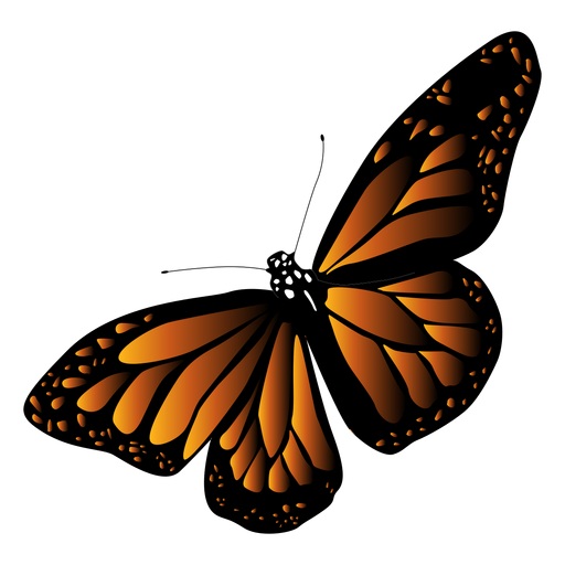 Detailed black orange butterfly vector Transparent PNG