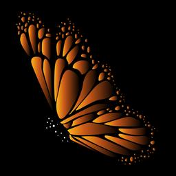 Vector mariposa detallada