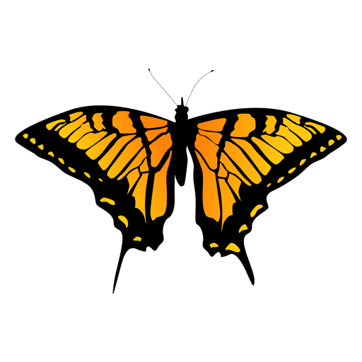 Diseño detallado de mariposa naranja Transparent PNG
