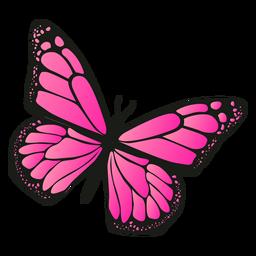 Vector de mariposa rosa detallada