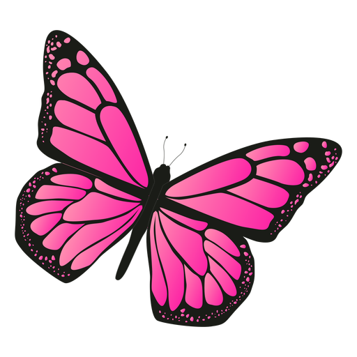 Detailed pink butterfly vector