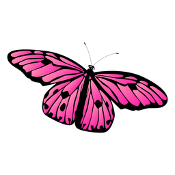 Detailed pink butterfly vector butterfly