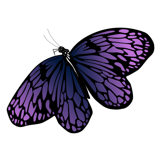 Detailed purple butterfly design Transparent PNG