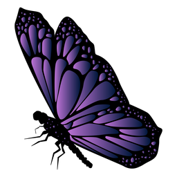 Detailed violet butterfly icon