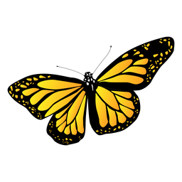 Mariposa amarilla jardín detallada
