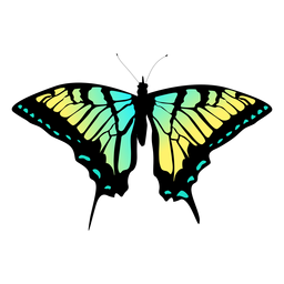 Green and yellow butterfly design