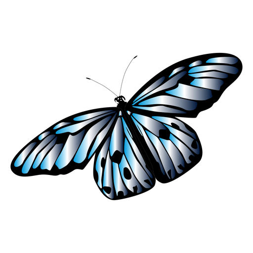 Light colored butterfly design