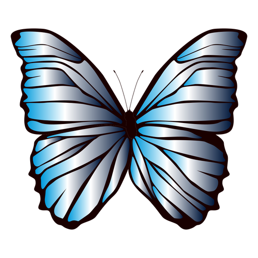 Lined wings butterfly design Transparent PNG