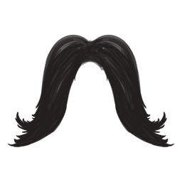 Long moustache brush stroke icon