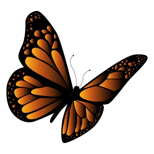 Orange and black butterfly vector Transparent PNG