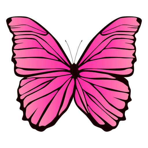 Pink butterfly design