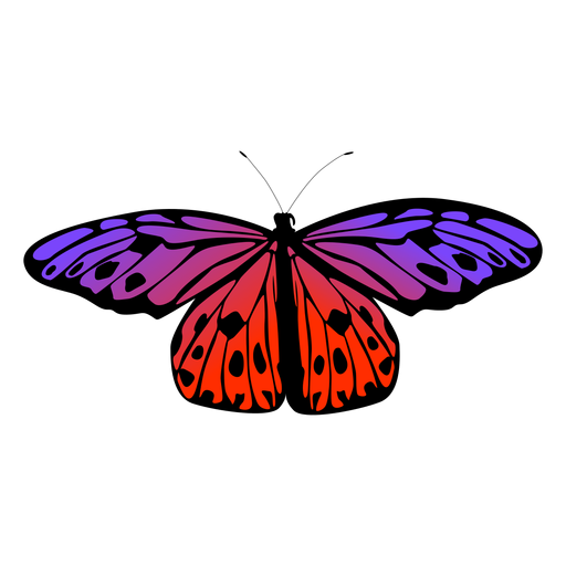 Design de borboleta roxa e laranja Transparent PNG