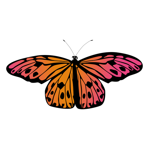 Small orange garden butterfly Transparent PNG