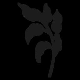 Stängel mit kurvigen Blättern Silhouette