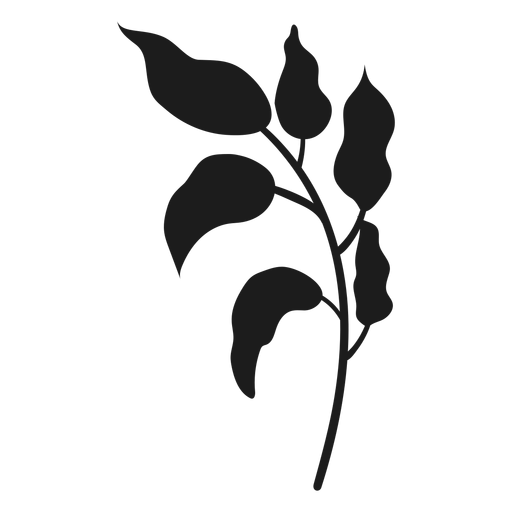 Stem with curvy leaves silhouette Transparent PNG