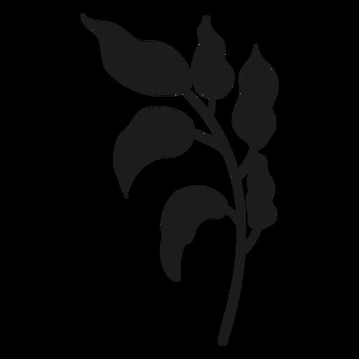 Tallo con silueta de hojas curvas