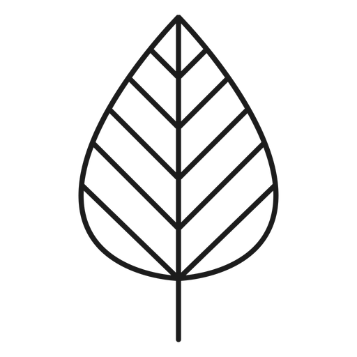 Stem with line leaf icon Transparent PNG