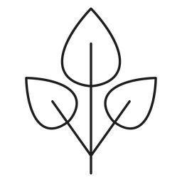 Three leaves in a branch icon