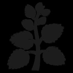 Árbol tronco con abanico hojas silueta.