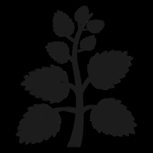 Árbol tronco con abanico hojas silueta. Transparent PNG