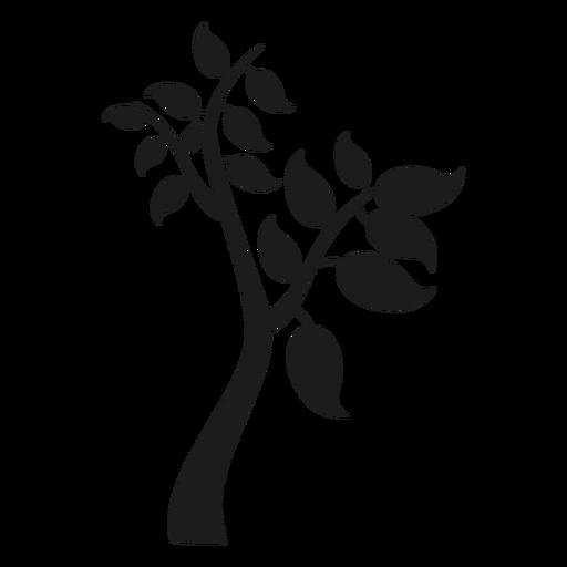 Árvore com galhos e grande ícone de folhas Transparent PNG