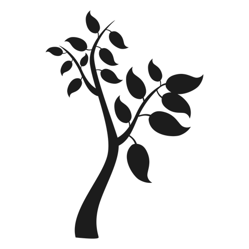 Tree with branches and big leaves icon Transparent PNG