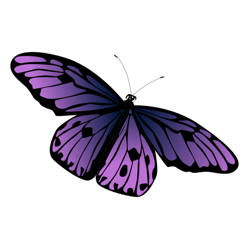Desenho de borboleta violeta Transparent PNG
