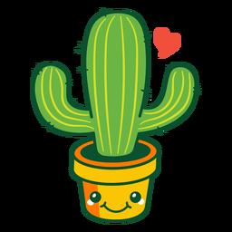 Süßer Kaktus