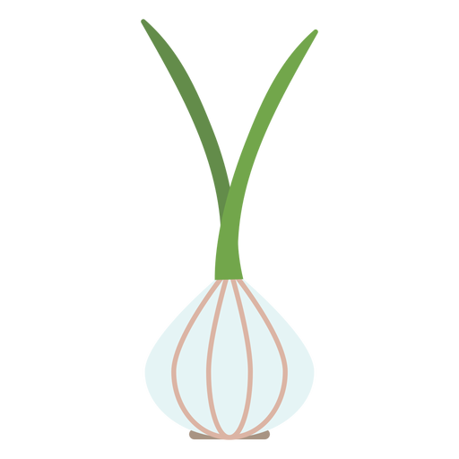 Garlic design element Transparent PNG