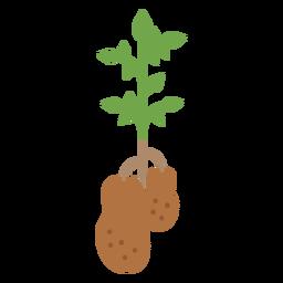 Elemento de diseño de planta de papas