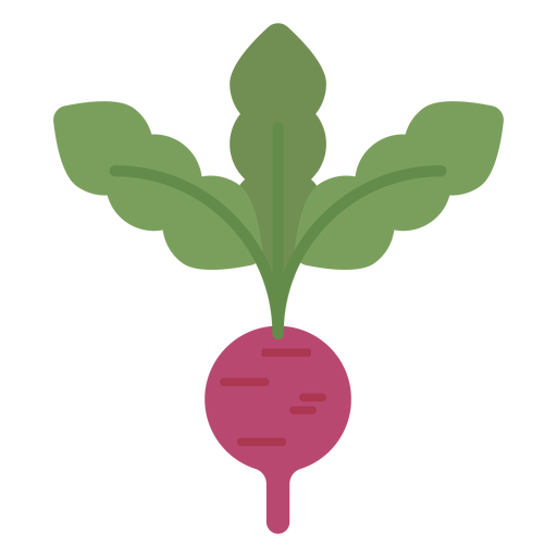Radish design element Transparent PNG