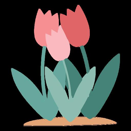 Elemento de flores de tulipa Transparent PNG