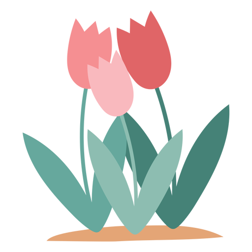 Tulip flowers element