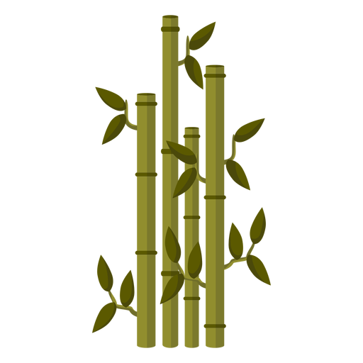 Bamboo stem illustration Transparent PNG