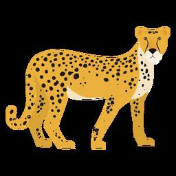 Ilustração de chita