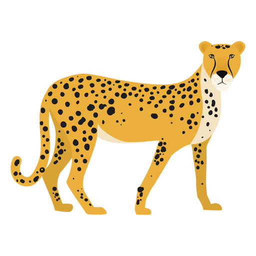 Cheetah illustration Transparent PNG