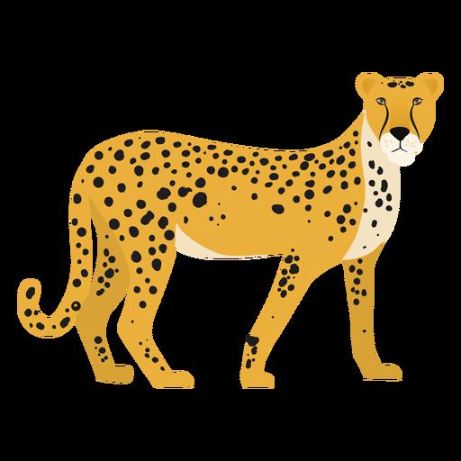 Ilustración de guepardo Transparent PNG