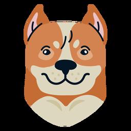 Perro plano