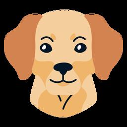 Perro cachorro plano