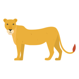 Lioness illustration