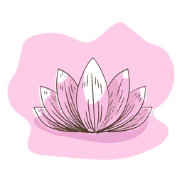 Lotus-Abbildung