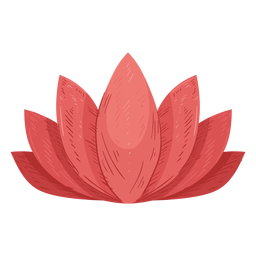 Lotus leaf illustration