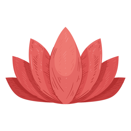 Lotus leaf illustration Transparent PNG