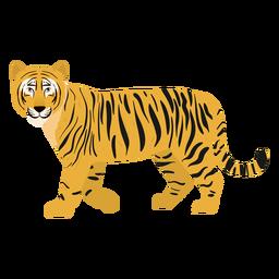 Tiger Abbildung Katze