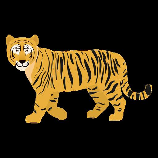 Tiger Abbildung Katze Transparent PNG