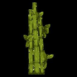 Ilustración de planta de bambú